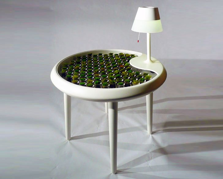Moss Table
