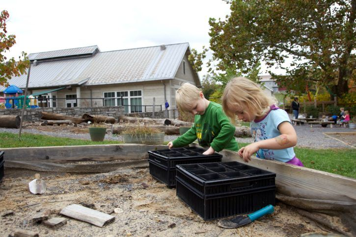 young cute Children collect plant acorns together