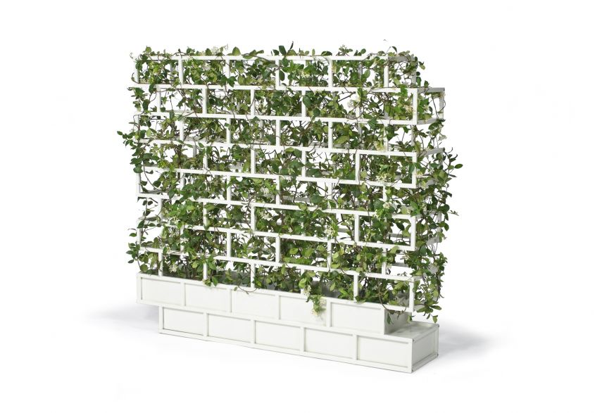 Greenwall di Nautinox Living