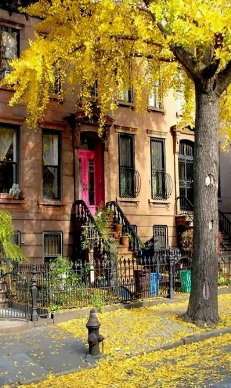 Brooklyn, New York in autunno