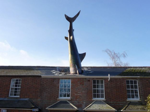 Headington Shark di John Buckley