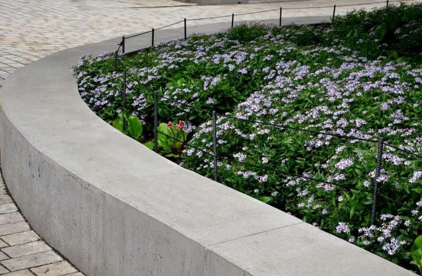 Retaining,Seat,Wall,Made,Of,Pure,Cast,Concrete,Blooms,Purple